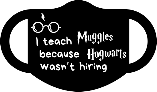 I teach Muggles because Hogwarts wasn't hiring