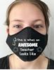 Teacher Masks